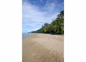 beach in rincon