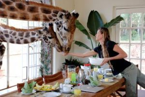 Giraffe-Manor-1-breakfast