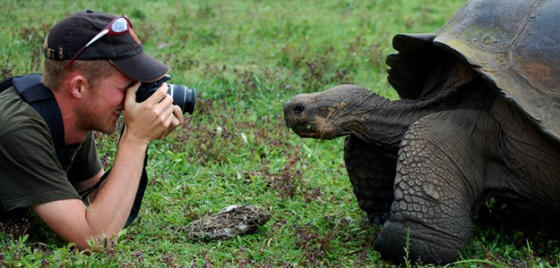 banner_galapagos_wildlife_giant_tortoise_and_photographer