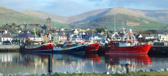 Dingle Harbour (2)