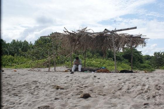 Beach by Cuero y Salada