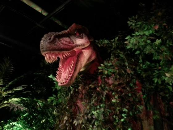 Academy of Natural Sciences_T Rex