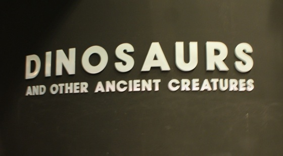 Academy of Natural Sciences_Dinosaura
